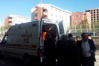 Pervari'de eşeğin ısırdığı 3 çocuk hastanelik oldu