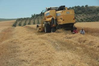 İcralık çiftçi sayısı da artık devlet sırrıoldu