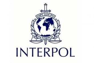 'Türkiye Interpol'ü muhalefeti bastırmak için kullanıyor'