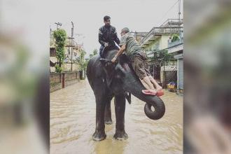 Nepal'de filler yüzlerce kişiyi kurtardı