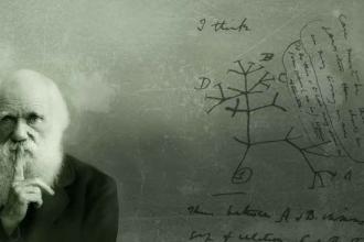 Atölyede müfredattan çıkarılan evrim teorisi tartışıldı