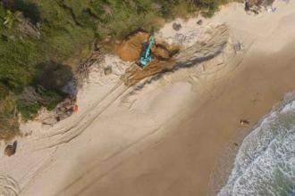 Avustralya'da balina, gömüldüğü sahilden çıkarılıyor