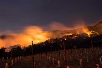 California'daki yangınlar: 15 ölü, 155 kişi kayıp