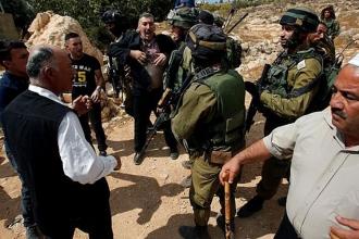Batı Şeria'da Filistinlilerin zeytinleri çalındı