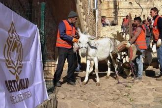 Mardin'de belediyede kadrolu çalışan 3 eşek emekliye ayrıldı