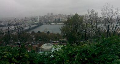 Süleymaniye'de saklı cennet: Botanik bahçesi