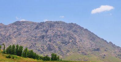 Erek Dağı'na orman kurulacak