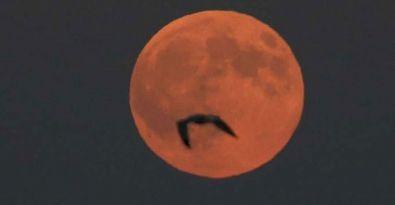 'Süper Ay' semalarda