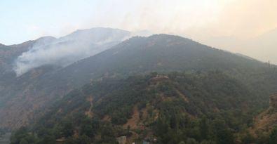 Hakkari ormanları günlerdir yanıyor