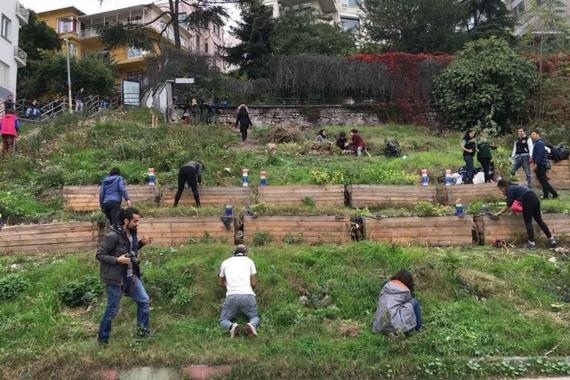 Roma Bostanı'na davet: Tohumları serpmeye gelin