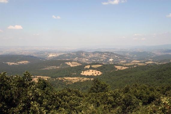 Cengiz Holding, Kaz Dağı'nda faaliyet yürüten altın madenini satın aldı