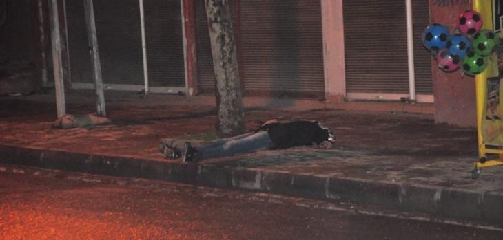 'Batman'da 1 kadın intihar etti, 1 kadın çatışmada öldürüldü' iddiası