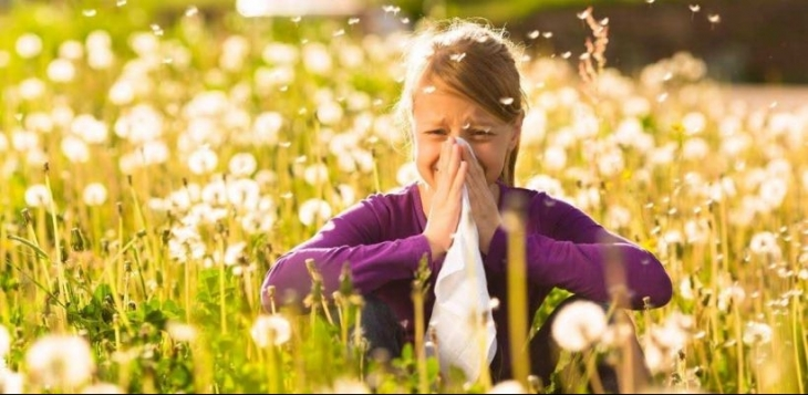 Türkiye'nin bahar alerjisi: Çim poleni