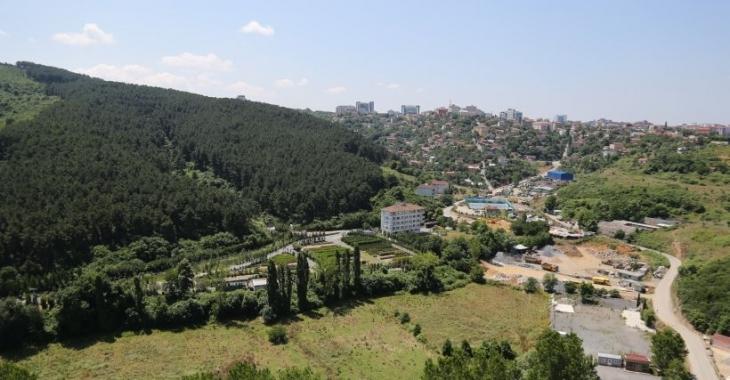 Sait Paşa Ormanı 30 yıldır direniyor