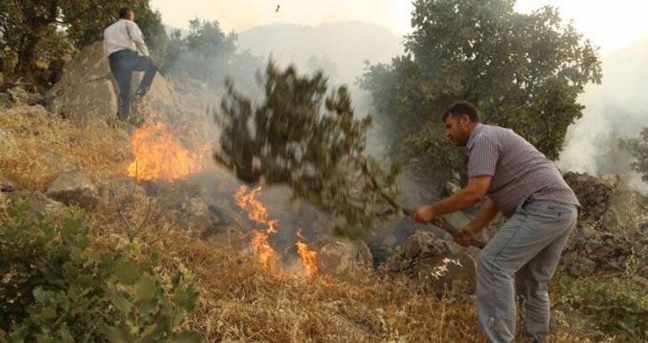 Cudî'de yangın yeniden başladı