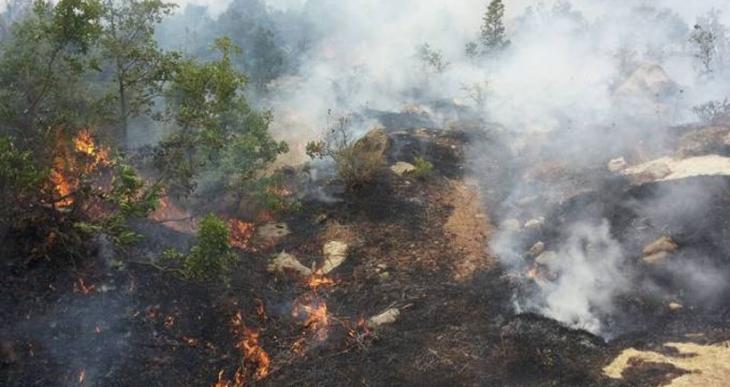 Şemdinli'de askerin top atışlarıyla çıkan yangın sürüyor