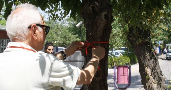 Gazi'de 'ağaçlara kıymayın' çağrısı