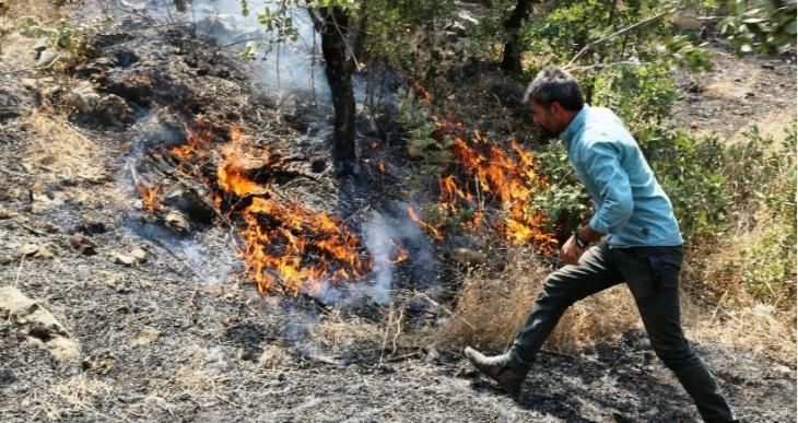 Halk, Cudi'deki yangını söndürmek için seferber oldu