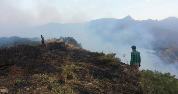 Şemdinli'de orman yangınları yayılıyor