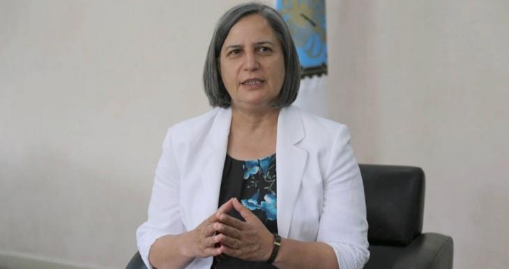Sur'daki TOKİ planlarına Kışanak'tan tepki: Bu projeler Sur'dan  döner