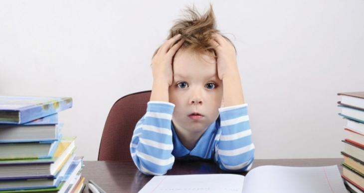 Fazla ödev üretkenliği kısıtlıyor