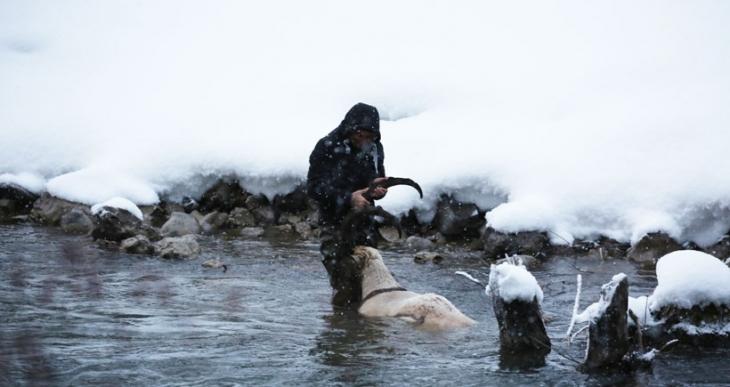 Avcılar Dersim'de bir dağ keçisini daha vurdu