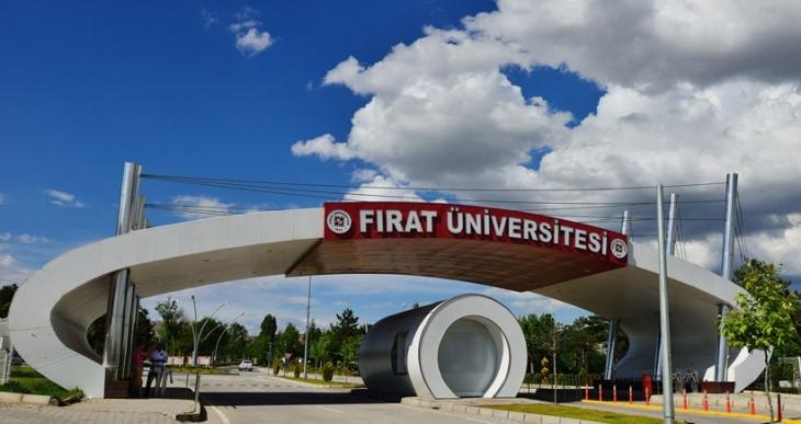 Fırat Üniversitesi Senatosu akademisyenlerin barış çağrısına 'ihanet belgesi' dedi