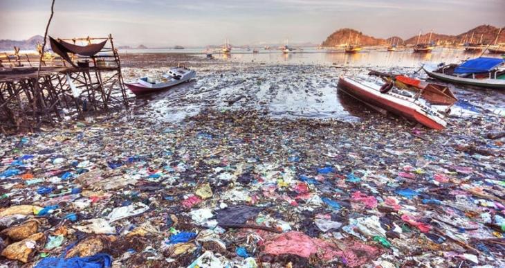 Doğa plastikle savaşıyor