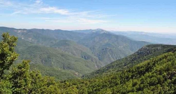 Kaz Dağlarındaki barajlar için neden ÇED gerekli değil?