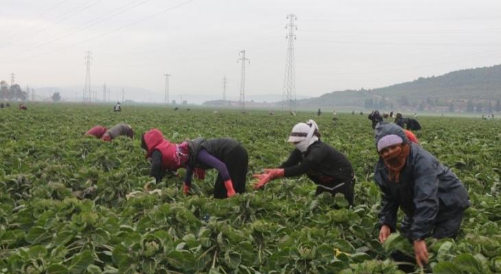 Mültecilere çalışma izni yeterli olacak mı?