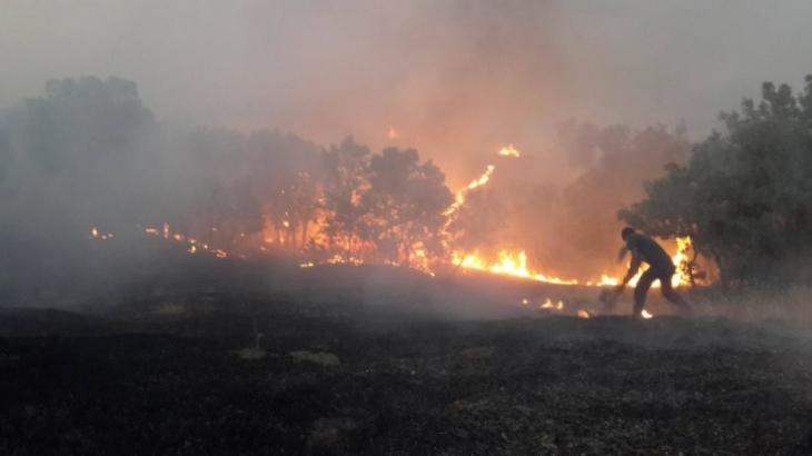 Lice'deki yangın kontrol altına alındı