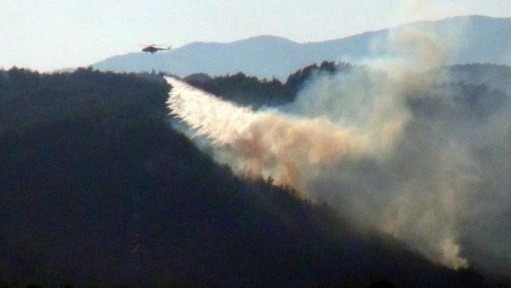 Hatay'da, yangında 5 hektarlık orman zarar gördü