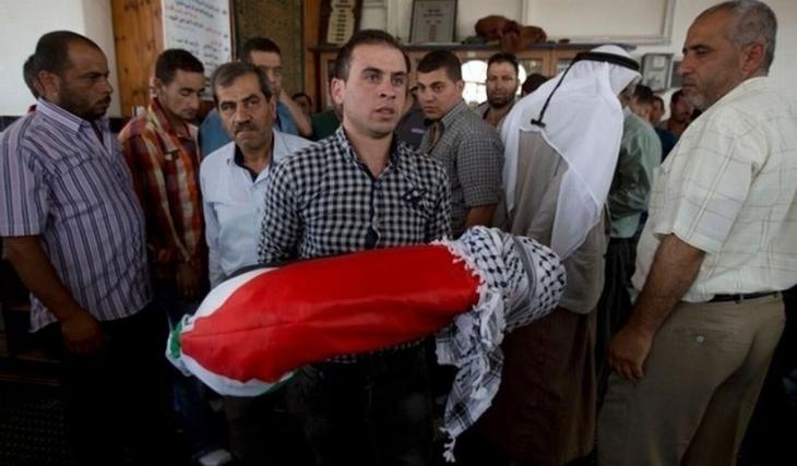 BM Filistinli 18 aylık bebeğin yakılmasını kınadı