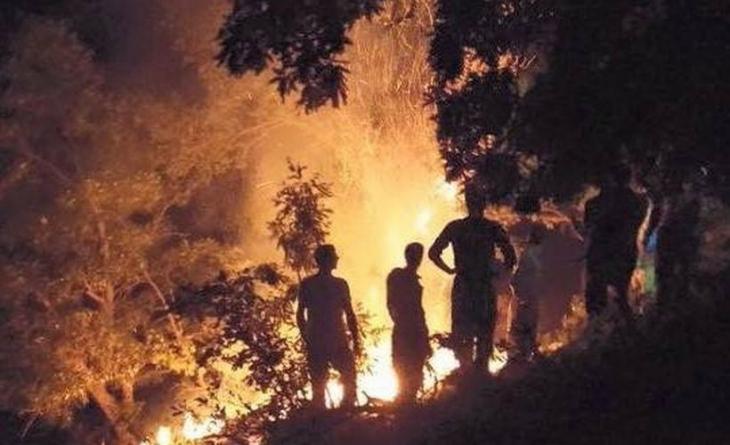 Uludere'de yangın