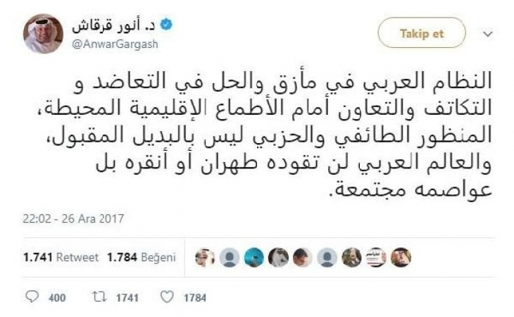 BAE'li Bakan: Arap dünyasını Ankara veya Tahran yönetmeyecek