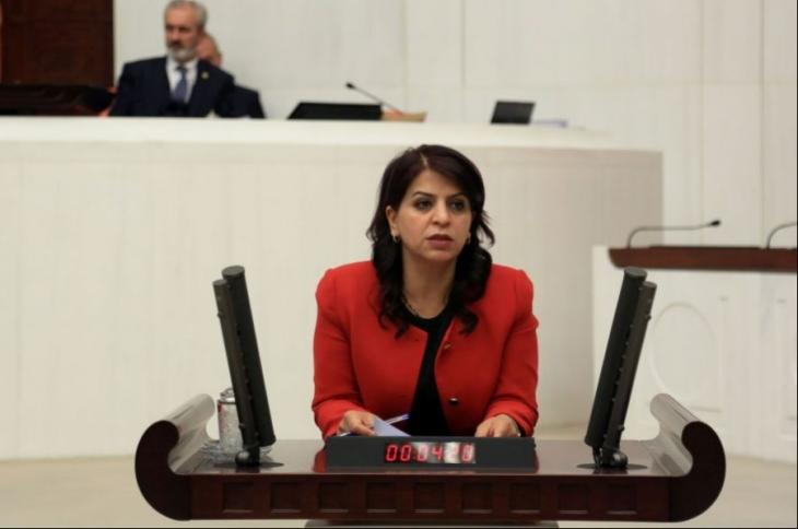 HDP'li Sibel Yiğitalp SES üyelerinin ihraç gerekçesini sordu
