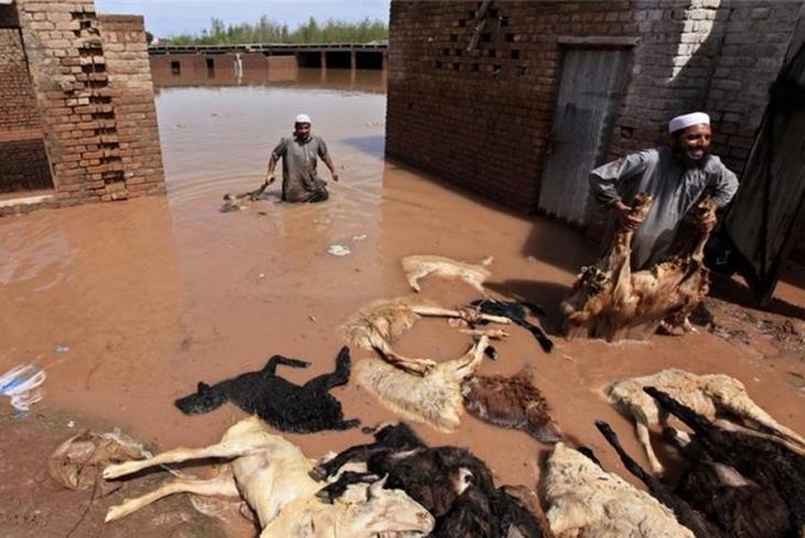 Pakistan'da sel: Onlarca ölü