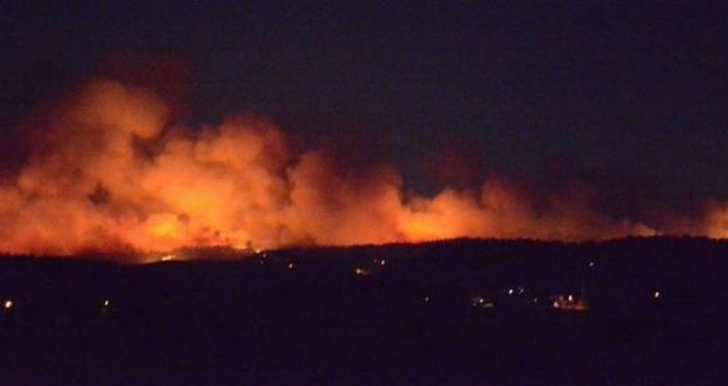 Bursa'da orman yangını: Evler boşaltıldı
