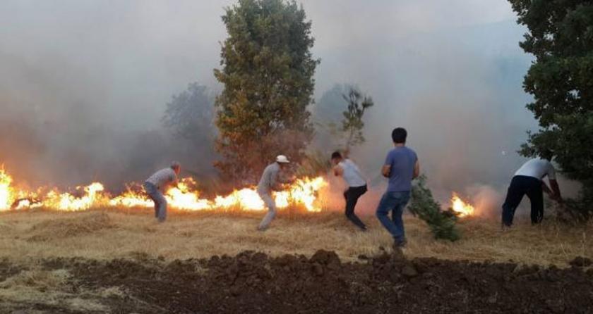 Lice'de çıkan orman yangını için halk seferber oldu