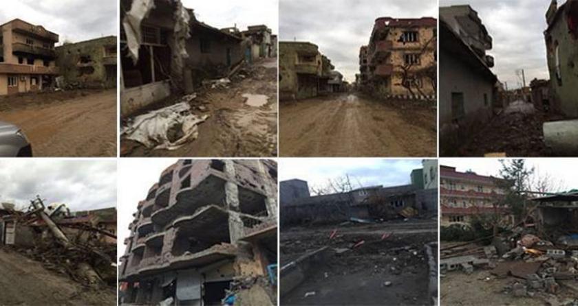 Sarıyıldız'dan uluslararası kuruluşlara Cizre çağrısı