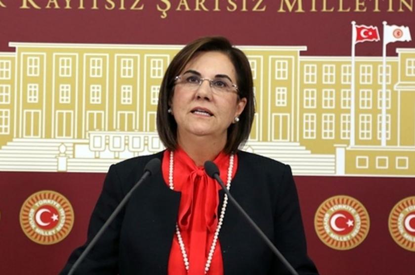 Usluer: Termik santral için Eskişehir'e operasyon yapılıyor