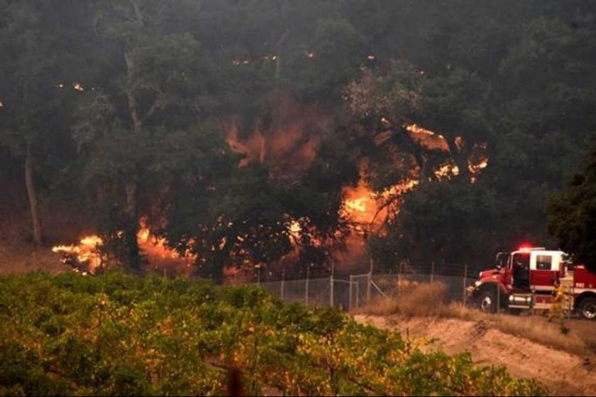 California'daki yangınlarda ölü sayısı 29'a çıktı