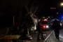 Eskişehir'de tur otobüsü kaza yaptı: 11 ölü, 46 yaralı