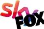 Rekabet Kurumu: Sky-Fox birleşmesi kamu yararına değil