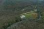 İBB: Maçka Parkı'ndan taşınan ağaçları Sarıyer'e diktik