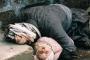 Halepçe Katliamı'nın 30. yıl dönümü!