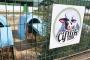 Yarkadaş: Çiftlik Bank'ın ardındaki siyasi gücün üzerine gidilmiyor