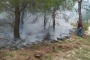 Aydın'daki orman yangınında yaklaşık 1 dönümlük alan kül oldu