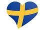 İsveç'te yeni kurulan ırkçı parti AfS seçimlere hazırlanıyor