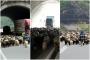 Koyun sürüsüyle tünelden geçen çoban, trafikte yoğunluk yaşattı